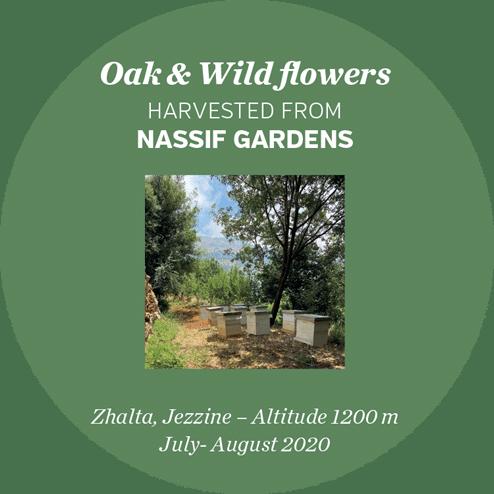 nassif-gardens