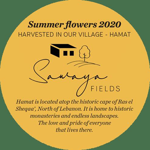 sawaya-fields